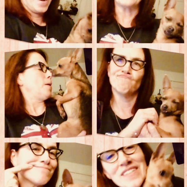 dea faces pup